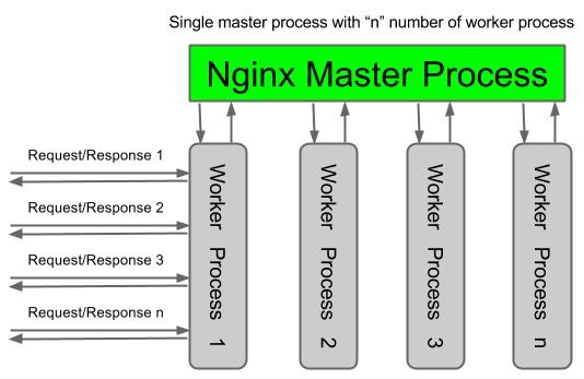 Nginx-architecture [1]